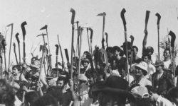 """""""Há uma tentativa de enquadrar movimentos sociais como terroristas"""""""