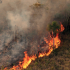 Pantanal já teve área de quase 3 milhões de estádios do Maracanã destruída pelo fogo