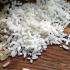 Arroz a R$ 40: especialista explica o que fez o preço do cereal subir tanto