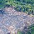 67% dos brasileiros esperam ações rápidas do Presidente para combater mudanças climáticas